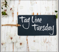 Tag Line Tuesday – Hard Wired