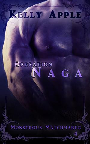Operation Naga