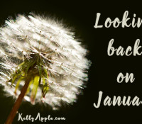 Looking back on January…