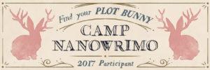July 2017 Camp NaNo Participant