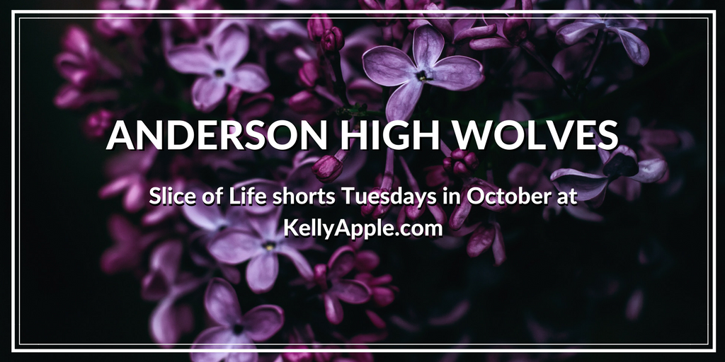 Anderson High Wolves Shorts